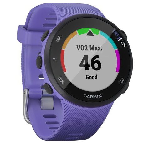 Часовник Garmin Forerunner 45S Iris